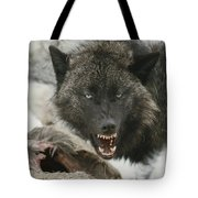 A Gray Wolf, Canis Lupus, Growls Tote Bag
