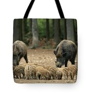 A Group Of Young Wild Boars Nose Tote Bag