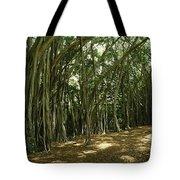 A Grove Of Banyan Trees Send Airborn Tote Bag
