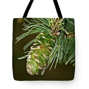 A Growing Pine Cone Tote Bag