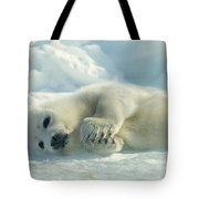 A Harp Seal Pup Lies On Its Side Tote Bag