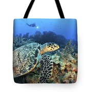 A Hawksbill Turtle Swims Tote Bag