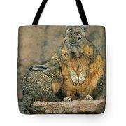 A Herbivorous Viscacha Nurses Her Baby Tote Bag