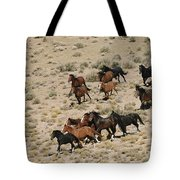 A Herd Of Wild Horses Gallops Tote Bag