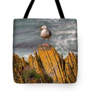 A Herring Gull, Colonsay, Scotland Tote Bag