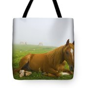 A Horse Sitting On The Grass In A Tote Bag