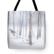 A Horse Stands Beside A Forest Of Bare Tote Bag
