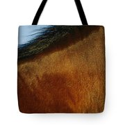 A Horses Neck And Mane, Seen So Close Tote Bag