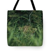 A Jaguar Peeks Out From The Foliage Tote Bag