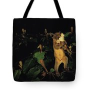 A Kinkajou Drinks Deeply Of Balsa Tote Bag