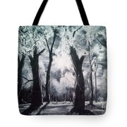 A Kiss For Eternity Tote Bag