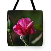A Knockout Rose Tote Bag