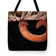 A Large Feather Duster Worm Tote Bag