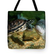 A Large Mouthed Bass And A Chicken Turtle In Aquarium In Cape Co Tote Bag