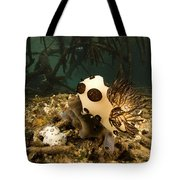 A Large Nudibranch Feeds On A Sponge Tote Bag