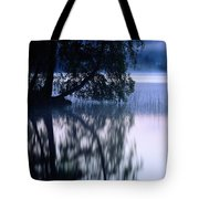 A Large Tree Grows At The Edge Tote Bag