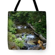 A Lazy Summer Day On Mt Spokane Tote Bag
