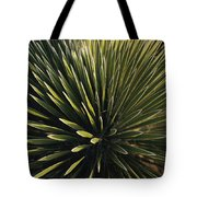 A Lechuguilla Plant In The Desert Tote Bag