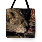 A Lion Feeding On The Carcass Of A Cape Tote Bag