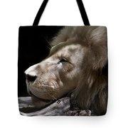 A Lions Portrait Tote Bag