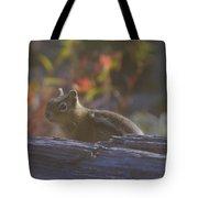 A Little Chipmunk  Tote Bag