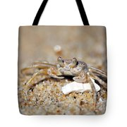 A Little Crabby Tote Bag