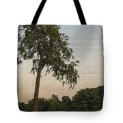 A Lonely Park Bench Tote Bag