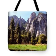 A Look Across The Meadow  Tote Bag