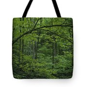A Lush Green Eastern Woodland View.  An Tote Bag