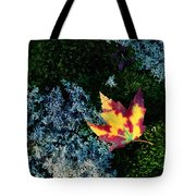 A Maple Leaf Lies On A Bed Of Moss Tote Bag