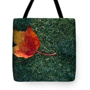 A Maple Leaf Lies On Emerald Moss Tote Bag