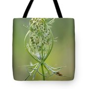 A Meal Of Lace Tote Bag