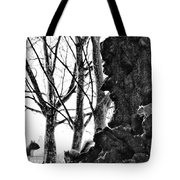 A Meeting Of Squirrels Tote Bag