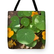 A Mix Of Orange Flowers And Round Green Leaves With Sun And Shadow Tote Bag