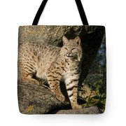 A Moment Of Observation Tote Bag