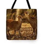 A Mother And Fawn Sika Deer Tote Bag