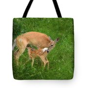 A Mother's Love - Doe And Fawn Tote Bag