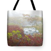 A Natural Garden At Dolly Sods Wilderness Area Tote Bag