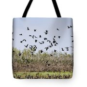 A Numbers Game V2 Tote Bag
