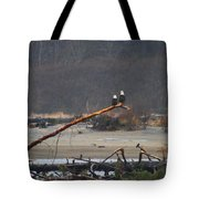 A Pair Of Eagles In The Rain Tote Bag