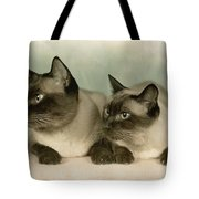 A Pair Of Siamese Cats Tote Bag