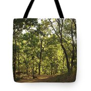 A Path Through A Sparse Forest And Trees Tote Bag