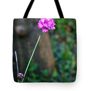 A Peaceful Moment Tote Bag
