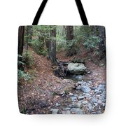 A Peaceful Redwood Creek On Mt Tamalpais Tote Bag