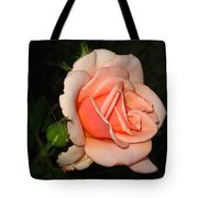 A Peach Of A Rose Tote Bag