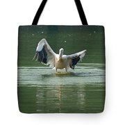 A Pelican Drying Its Wings After Landing In The Lake Inside Delhi Zoo Tote Bag