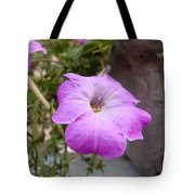 A Photo Of A Purple Trumpet Shaped Flower Tote Bag
