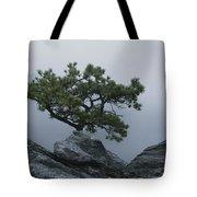A Pine Tree Clings To A Rocky Ridge Tote Bag