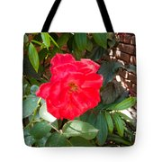 A Pink Rose Being Backlight With The Petals Looking Translucent Tote Bag