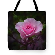 A Pink Rose Tote Bag by Xueling Zou